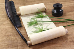 Papyrus scroll with plant Royalty Free Stock Images