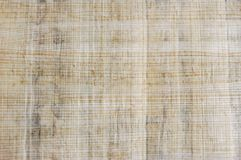 Papyrus texture Stock Image