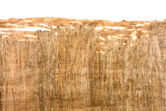 Papyrus texture Stock Images