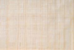 Papyruspapier stockbild