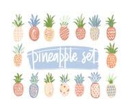 Paquet d'ananas tirés par la main de couleur et de texture différentes d'isolement sur le fond blanc Ensemble de tropical exotiqu illustration de vecteur