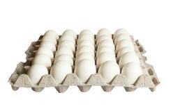 Paquet d'oeufs blancs d'isolement sur le fond blanc Photo libre de droits