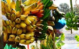 Paquet de banane Photos stock