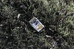 Paquet de cigarettes sur l'herbe Image stock