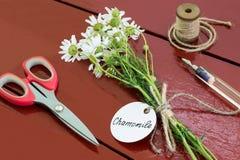 Paquet de hamomilla de Matricaria de camomille avec le label Images stock