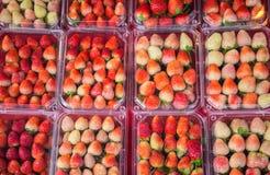 Paquet de la fraise fraîche sur l'étagère étant vente par la rue, Thaïlande Photographie stock libre de droits