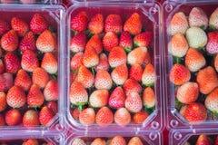 Paquet de plan rapproché de la fraise fraîche sur l'étagère, Thaïlande Photos stock