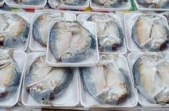 Paquet de poissons frais de maquereau images libres de droits