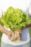 paquet de salade dans des mains Photos libres de droits