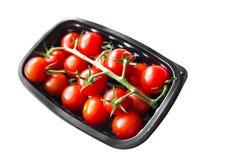 Paquet des tomates mûres rouges sur la vigne Photographie stock libre de droits