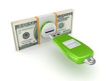 Paquet et mémoire Flash du dollar. Images libres de droits