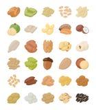 Paquet plat Nuts d'icônes illustration libre de droits