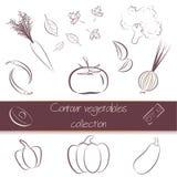 Paquet superbe de légumes de découpe illustration de vecteur