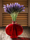 Paquete de flores de la lavanda Fotos de archivo libres de regalías