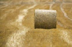 Paquete de grano Fotografía de archivo libre de regalías