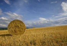 Paquete de grano Foto de archivo