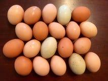 Paquete de huevos Fotografía de archivo