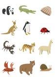 Paquete 2 de los animales Imágenes de archivo libres de regalías