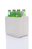 Paquete de seis de botellas de soda de la cal del limón Imagen de archivo libre de regalías