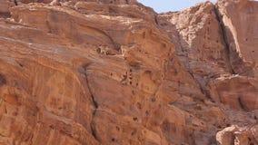 Paquete del cabra montés de Wadi Rum en un acantilado metrajes