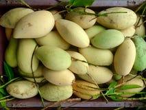 Paquete del mango Foto de archivo libre de regalías