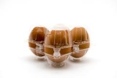 Paquete plástico del huevo aislado en el fondo blanco Fotografía de archivo