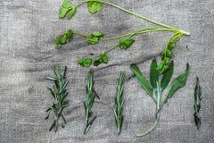 Paquetes de especias frescas de las hierbas, en fondo de lino gris imagen de archivo libre de regalías