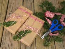 Paquetes de la secuencia y del papel marrón con la decoración de la conífera, ri del control Imágenes de archivo libres de regalías