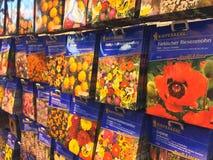 Paquets de graine de fleur photographie stock