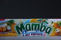 Paquets de Mamba, l'espace de copie photo libre de droits