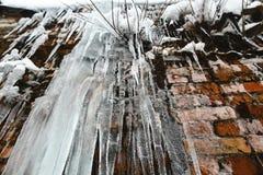 Paquets et glaçons de glace de plan rapproché, vieux fond abstrait de mur de briques avec de la glace de fente, mousse, et branch Photos libres de droits
