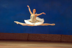 Paquita Royalty Free Stock Images
