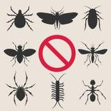 Parásitos de insecto caseros ilustración del vector