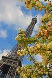 París en el resorte Foto de archivo