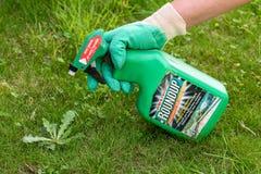 París, Francia - 15 de agosto de 2018: Jardinero que usa el herbicida del rodeo en un jardín francés El rodeo es una marca de fáb fotos de archivo