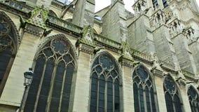 París Notre Dame almacen de video