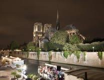 París - Notre Dame en la noche Imagen de archivo
