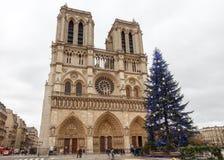 parís Notre Dame Navidad Fotos de archivo