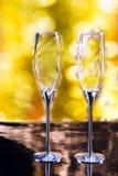 Par av eleganta Champagne Glasses Royaltyfri Fotografi