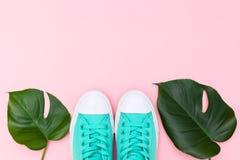 Par av grön kanfas och tropiska sidor, monstera på rosa backg Arkivbild