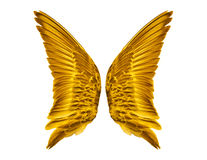Par av guld- fågelvingar Arkivfoto
