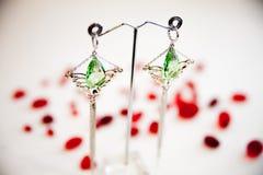 Par av härliga silverörhängen med gemstones på den naturliga bakgrunden Arkivbild