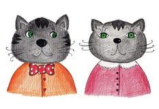 Par av katter Arkivfoto