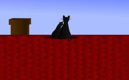 Par av katter på taket Royaltyfri Foto