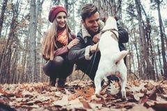 Par av kvinnan och mannen som spelar med deras hund i nedgång royaltyfri bild