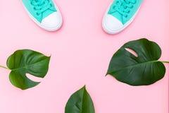 Par av mintkaramellen färgar kanfas och tropiska sidor, monstera på rosa färger Fotografering för Bildbyråer