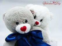 Par av nallebjörnen som är förälskade för valentin dag arkivbild