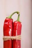 Par av röda felika chilipeppar Royaltyfria Foton