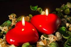 Par av röda stearinljus bland de torkade blommorna Fotografering för Bildbyråer