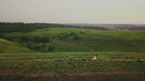 Par av ungdomarsom går i solnedgångsommaraftonen i fält; flyg- sikt lager videofilmer